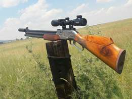 I want to buy a PCP air rifle