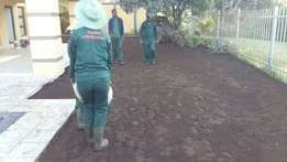 Africa lawn we sale instant lawn and delivery Topsoil, compost