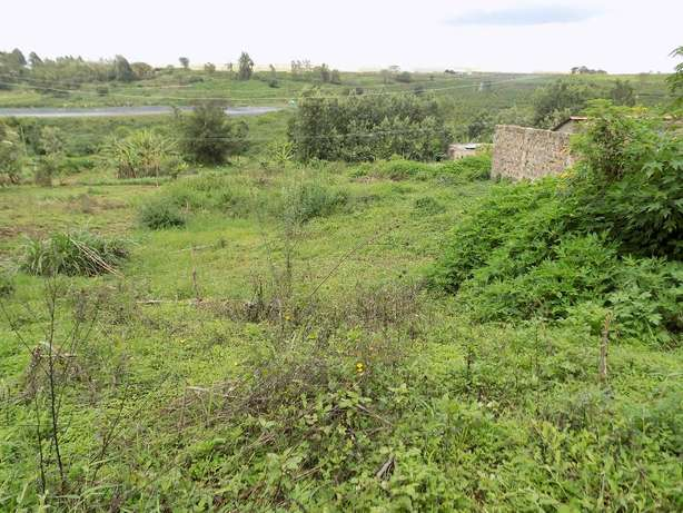Thika Ngoingwa 50x100 plot for sale Thika - image 4