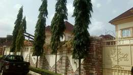 Executive 4 bedroom duplex with 3bedrm BQ at zoo estate for sale