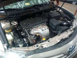 Toyota Camry 09 (Muzzle)