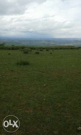 Plots for sale Gilgil - image 1