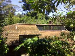4 badroom house rent Kitisuru