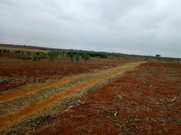 Mutundu Mangu investment plots Thika - image 4