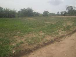 Spacious 50 by 100ft plot for sale in Jogo-Bukerere at 12m