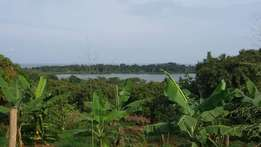 2 acres viewing the lake for quick sale at Bugiri-Ebb rd at 150m each
