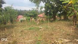 Land for sale in Walusimbi