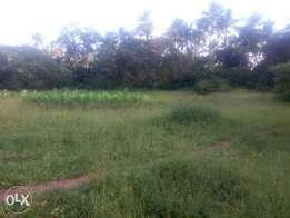 1/4acre plot for sale in diani