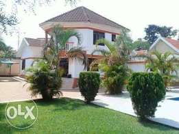 House for sale in bunga 3 bedrooms