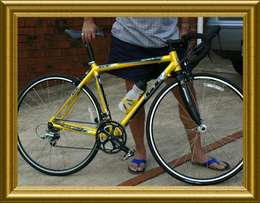 GTX Racing Bicycle