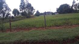1/4 plot at outspan 200metres from tarmac