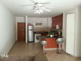 Apartment to share at Telford Court: R3 000