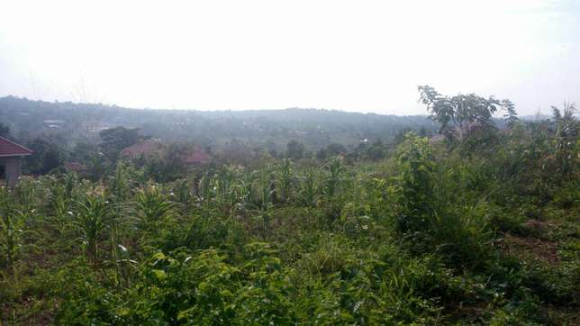 Am selling 2acres of land in wobulenzi kaliro luweero Luweero - image 1