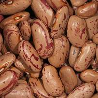 Suger Beans