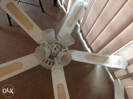 Retro Victorian-style fan and light fitting