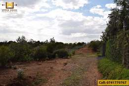 Prime Land for Sale in Nanyuki - 1 Acre