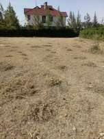 An 1/8 plot for sale in acacia 2 Rongai