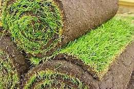 Mr lawn grass supplies and Topsoil/ Compost. Free delivery and quotes