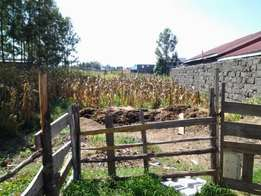 1/8th acre vacant plot for sale in Royal estate