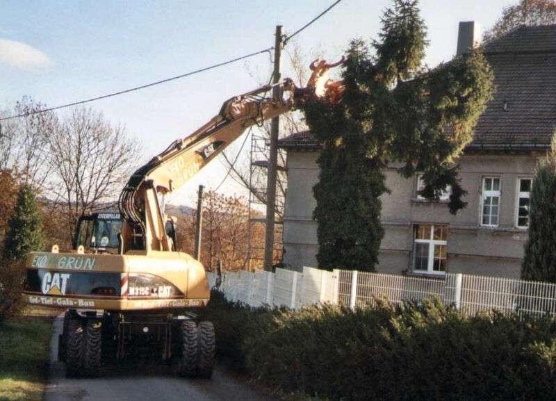 CAT 315 C mit NEUER Baumschere - 2003 - image 2