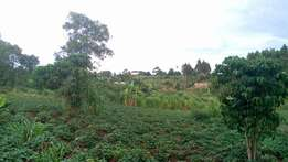 Nice 2.5 acres for sale in Kiira at 200m