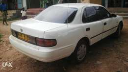 Toyota camry local