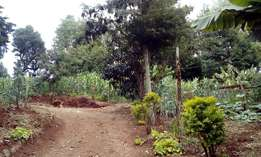 50 by 100 plot for sale ideal for residential and commercial use