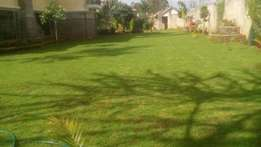 Arabic Grass Lawns and other landscaping services