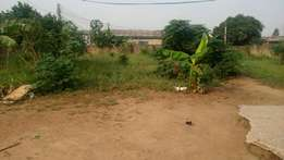 Lands for sale at kwabenya pokusea ACP