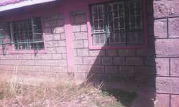 Own compound to let 100m from tarmac