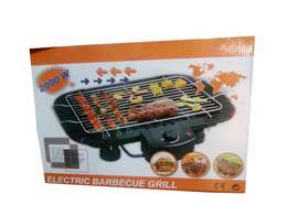 Electric barbecue for grill