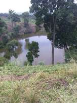 13 acres of Titled land on crater lake for sale in Fort portal, Uganda