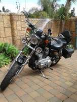Harley Davidson Sportster 883 - Excellent Condition