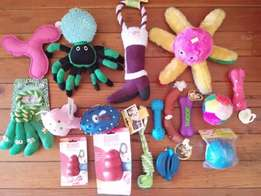 Dog Toys assorted at 40% off