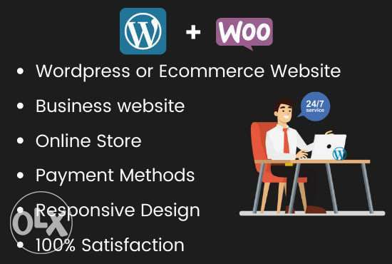 we create a professional wordpress ecommerce website or online store