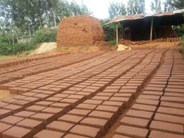High quality building bricks in Rongo