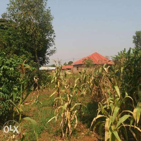 Plot of land Wakiso - image 2