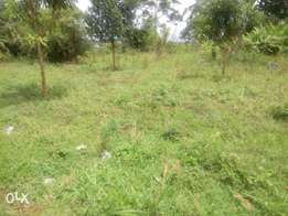 Hot Quick sale from a Financial Institution: 0.089 Hectares of Land