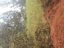 1 acre land for sale in kitisuru