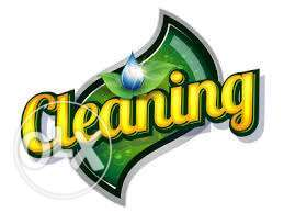 Cleaner for clean your house