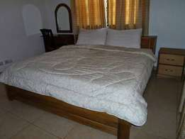 2 bedroom furnished apartment at East Legon