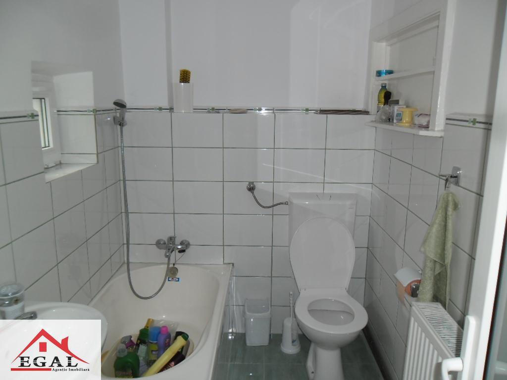 Casa de inchiriat, Argeș (judet), Nucșoara - Foto 4