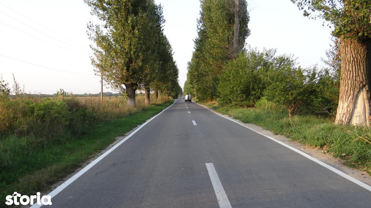 Teren de Vanzare, Ilfov (judet), Dumitrana - Foto 4