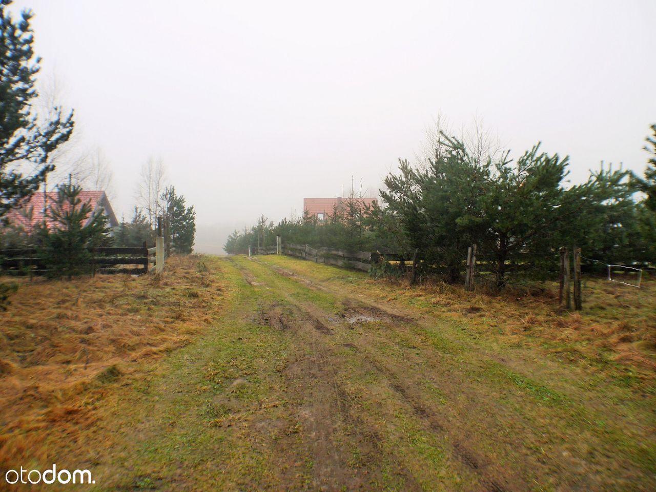 Działka na sprzedaż, Fornetka, suwalski, podlaskie - Foto 3