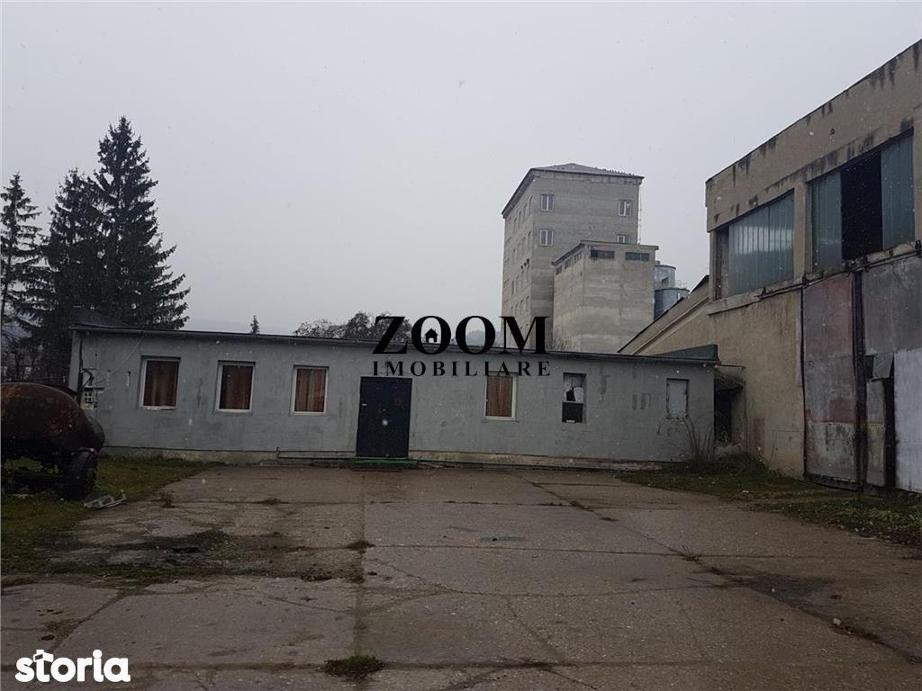Depozit / Hala de inchiriat, Cluj (judet), Strada Cheile Baciului - Foto 3