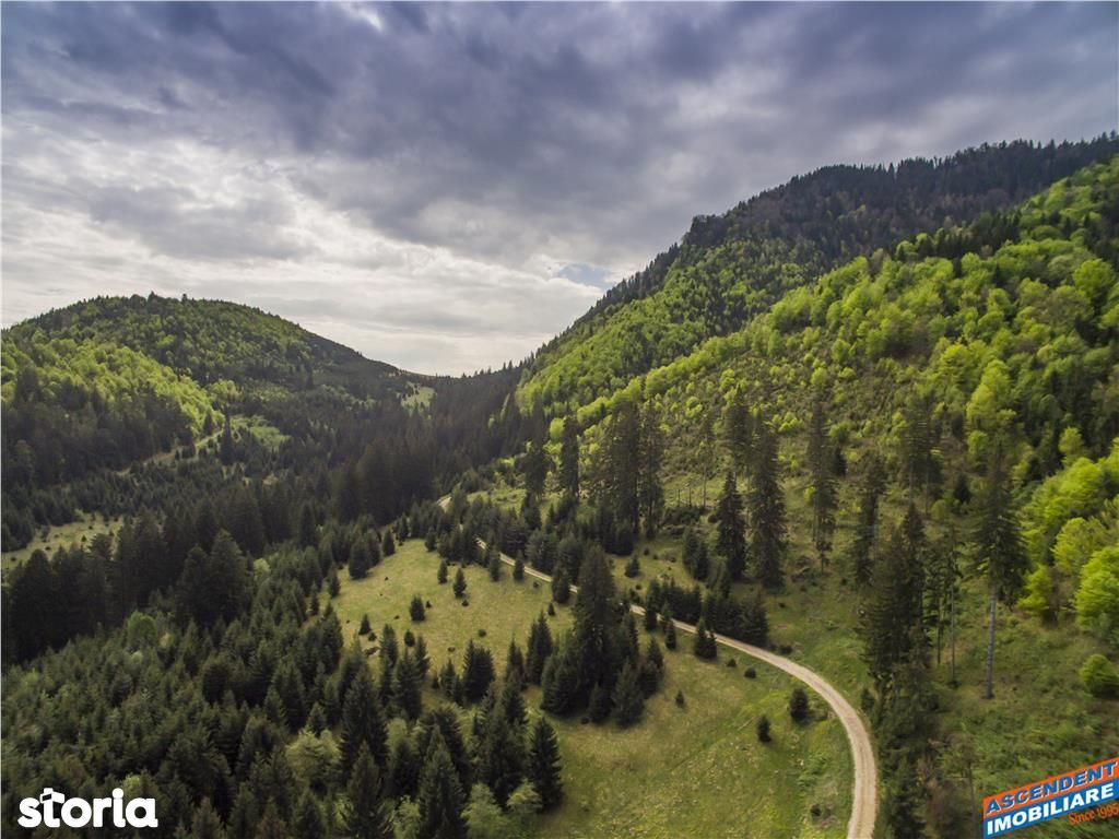 Teren de Vanzare, Brașov (judet), Piața Libertății - Foto 7