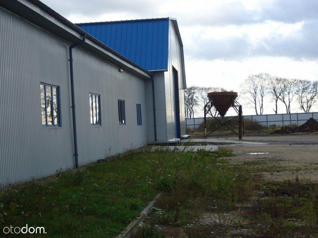 Hala/Magazyn na sprzedaż, Bajerze, chełmiński, kujawsko-pomorskie - Foto 9