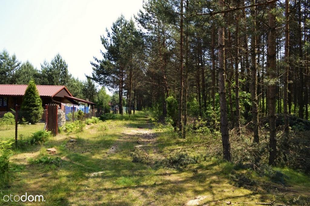 Działka na sprzedaż, Żarki-Letnisko, myszkowski, śląskie - Foto 10