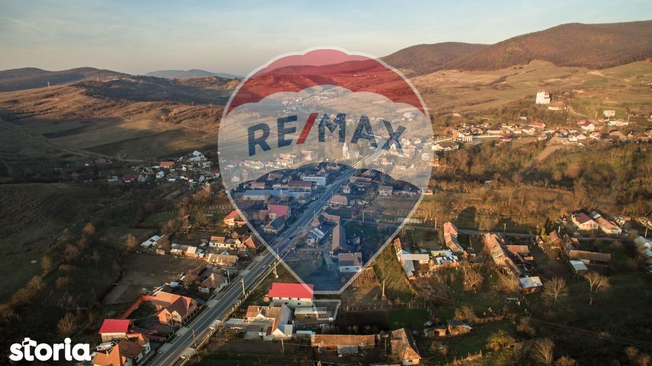 Depozit / Hala de vanzare, Bistrița-Năsăud (judet), Herina - Foto 12
