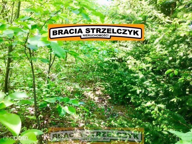 Działka na sprzedaż, Dzierżenin, pułtuski, mazowieckie - Foto 2